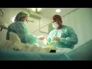 Лечение варикоцеле. Операцию проводит к.м.н. Бакирханов С. К.