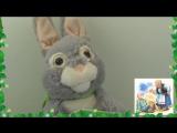 Зайка-сказочник. Интерактивная, мягкая игрушка для малышей Код РА60824   Цена 9 825 тг