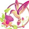Kolibri Sochi