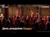 День рождения Будды, открытие Каймановых островов и другие события 10 мая..