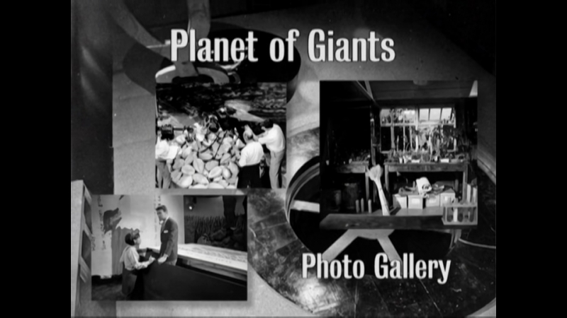 Planet of Giants - Photo Gallery