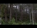 Primavera, verano, otoño, invierno... y primavera - Kim Ki-duk (2003).