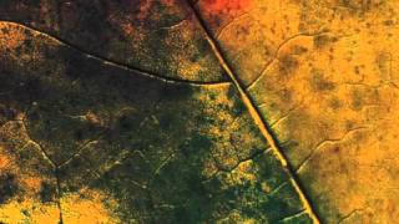 Аудиоспектакль Реки, фрагмент 1
