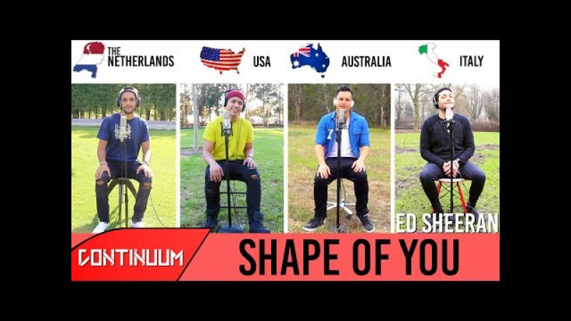 Shape of You - Ed Sheeran (Continuum Cover)