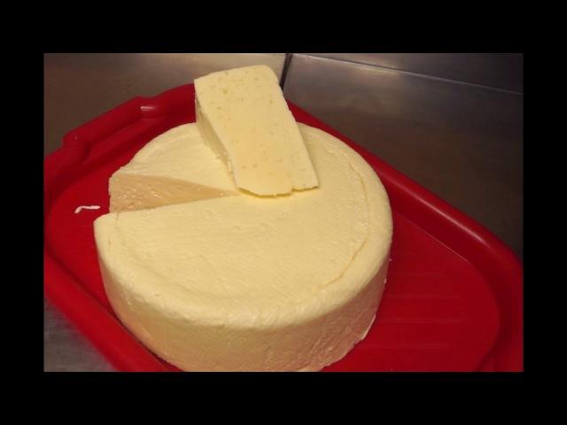 Как приготовить сыр в домашних условиях?