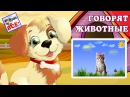 Говорят животные голоса животных. Хит интернета по-новому! / Talking animals cartoon. Наше всё!