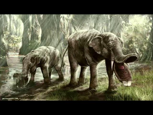 10 странных доисторических животных | Озвучка DeeAFilm