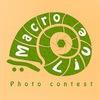 Международный конкурс макро фотографии