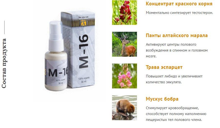 M 16 для потенции