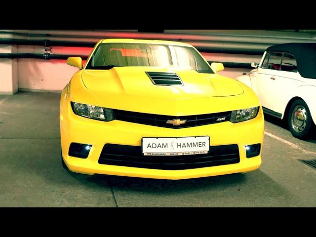 Fancy Adam van Hammer - Slice Me Nice (33 Anniversary Remix) Official Video 2016