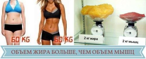 идеальный вес на рост, соответствие роста и веса, рассчитать вес по росту,