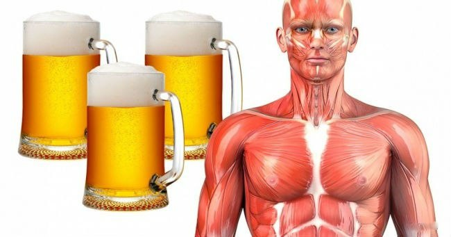 Что будет если мужчина будет пить пиво каждый день