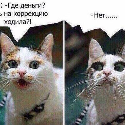 Лилия Сашкина