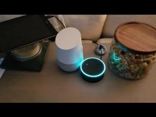 Голосовых помощников Google и Amazon заставили вести бесконечный диалог