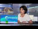 Татьяна Миткова о распаде СССР и своем возвращении на Центральное телевидение