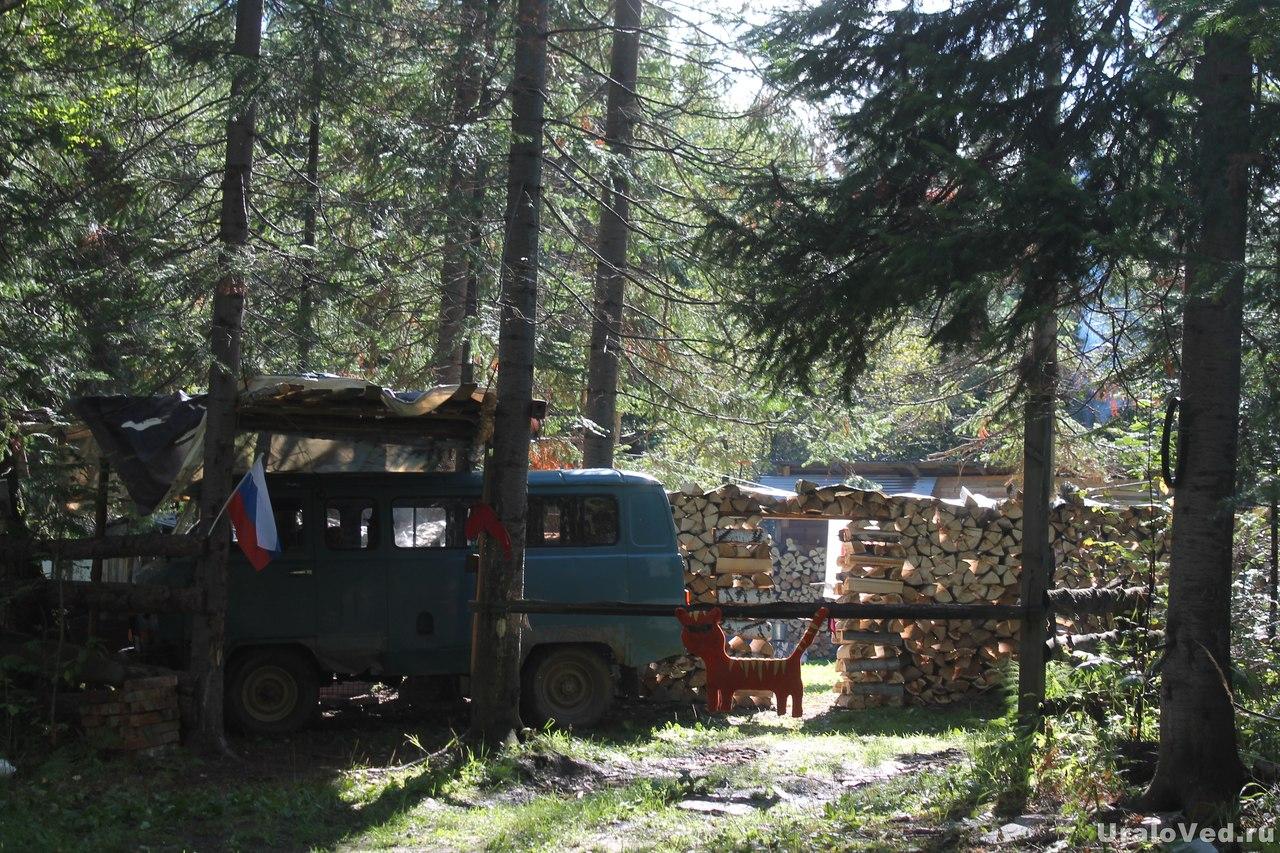 Жилище в лесу