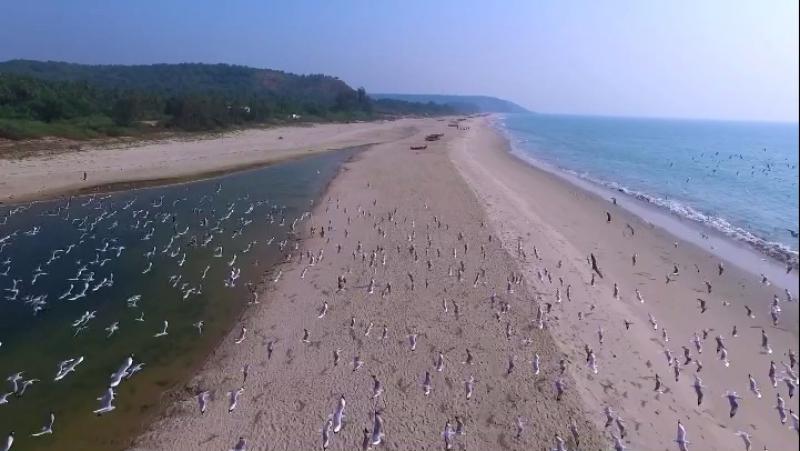 Paradise beach, Maharashtra, India. Yanuary,2017