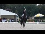 Elena Sidneva &amp Romeo-Star 15.09.2013 CDI-W Kur Wroc