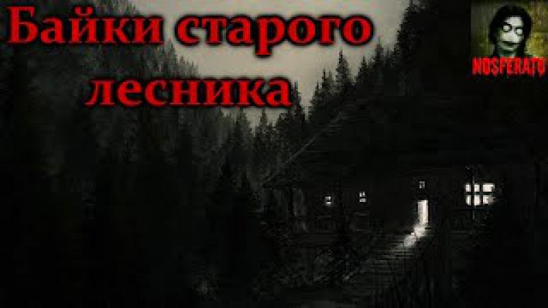 Истории на ночь Байки старого лесника