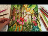 MAGICAL JUNGLE Adult Coloring Book by Johanna Basford Coloring With Colored Pencils