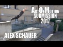 Alex Schauer - Art Of Motion Submission 2017
