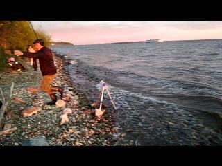 рыбалка, рассвет