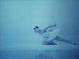 Saint.Saens-The.Swan.1973.Майя Плисецкая