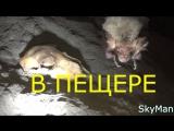 Combo Vine 1 - Пещера Пугачева