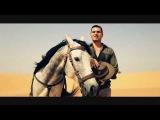 David Vendetta vs. Tara McDonald feat. Alim Gasimov - I'm Your Goddess