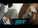 Собачья работа. Серия 6 2012 Криминал, детектив @ Русские сериалы