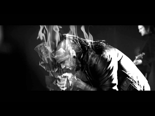 The Veer Union - Defying Gravity (Official Video)