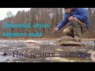 Бешеный окунь первого льда - Болен Рыбалкой №314