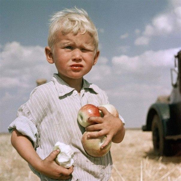 Дaаa, дeтствo крутo измeнилось. Раньшe у coceдей яблоки воровали, a тe