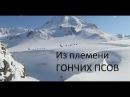 Из племени гончих псов HD Документальный фильм об уникальной гонке на собачь