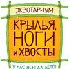 Вологодский Экзотариум «Крылья, ноги и хвосты».