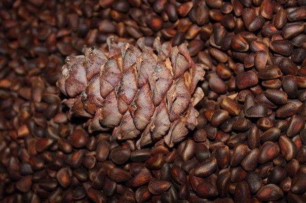 Орех кедровый (республики Алтай) 1 кг