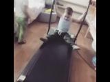 s_h_a_b_a_n_o_v_a video
