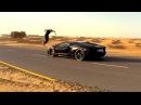 Lamborghini Alexander Tikhomirov in Dubai 4