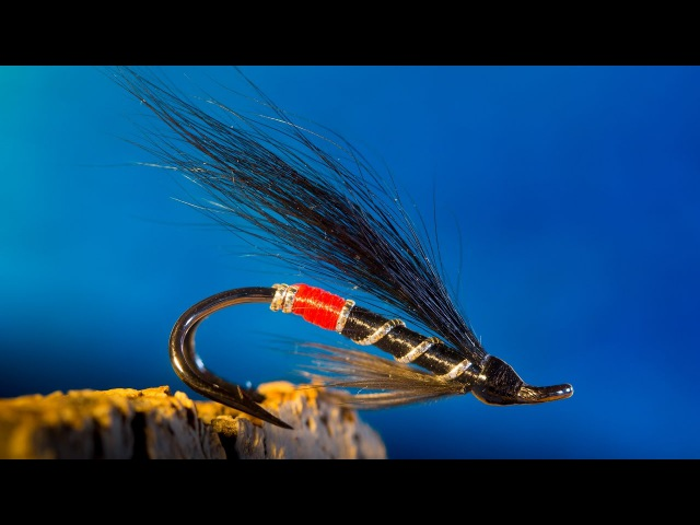 Black Bear Red Butt - SalmonSteelhead fly tying