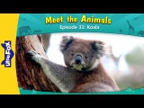 Kids' English Meet the Animals 31 Koala Level 2 By Little Fox
