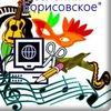 """МБУК """"КДО сельского поселения Борисовское"""""""