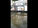 Закарпаття онлайн Затоплений переїзд з Анкудінова на Радванку
