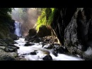 Lazar Berman - Schumann - Piano Sonata No 2 in G minor, Op 22