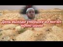День выхода умерших из могил - Икрима Цороев