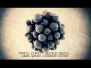 Manu Chao - Bongo Bong Nico Pusch Bootleg Remix