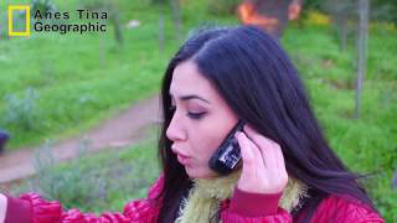 Anes Tina ►L'amour En Algérie ✪ الحب في الجزائر أنواع الفتياة ال 158