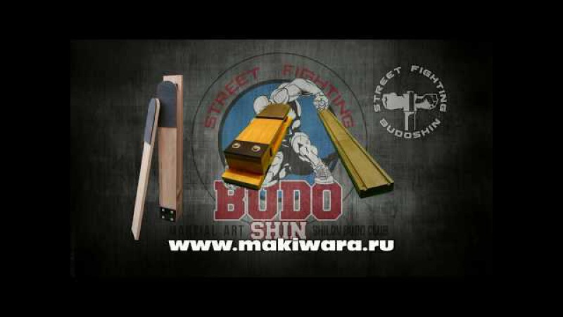 Макивара Камертон Шилова. Михаил Шилов