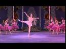 The Nutcracker Waltz of Flowers YouTube