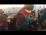Ташкент тандыр кауаб