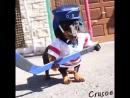 Живи хоккеем вместе с Рестораном-Баром Фортуна!